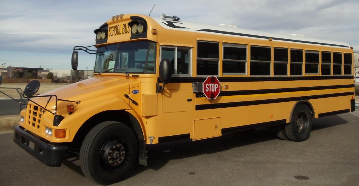 2006 Bluebird Bluebird Bus For Sale